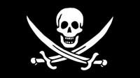 pirate flag 200x112 - La mise-à-jour 1.4 de la DSi bloque les linkers!