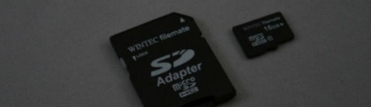 Wintec microSDHC Class 10 16Go